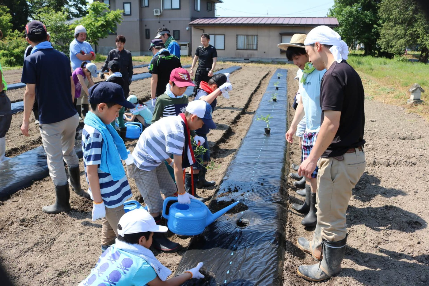 わんぱくキッズスクール:「わんぱく農園」での野菜の種まきや苗の植え付けを体験の様子