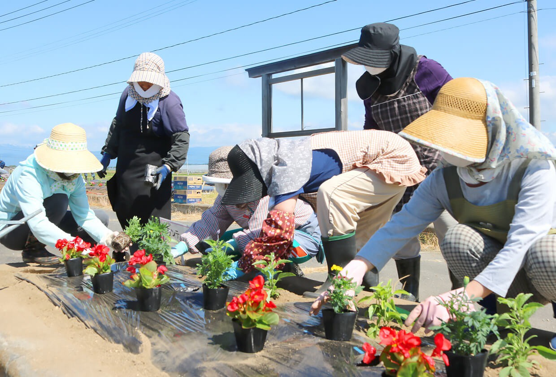 写真:花壇コンクール作業の様子