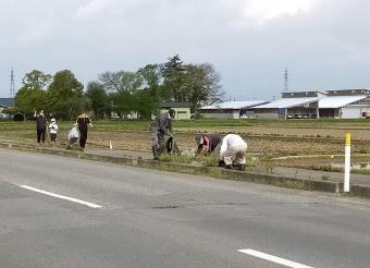 写真:ふれあい道路愛護事業の様子